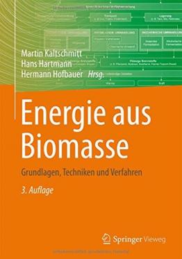 Energie aus Biomasse: Grundlagen, Techniken und Verfahren -